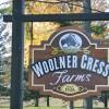Woolner Cress